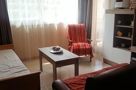 Wonderful Appartment in Tivissa - Huoneisto