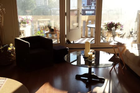 Bright, cozy downtown/river valley apt - Appartement