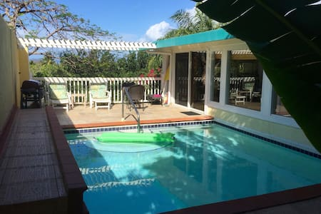 Luxury Beach Cottage. Secluded Oasis - Saint Thomas
