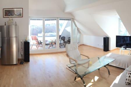 Möblierte 4 Zi.-Wohnung -Schwabing - Munich