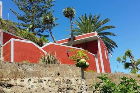 Mitwohnen für Nichtraucher - Puerto de la Cruz - Huoneisto