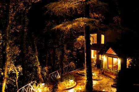 Redburn Lodge, Landour, Mussoorie - Mussoorie - House