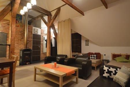 attic apartment for 3 people - Gdańsk - Apartemen