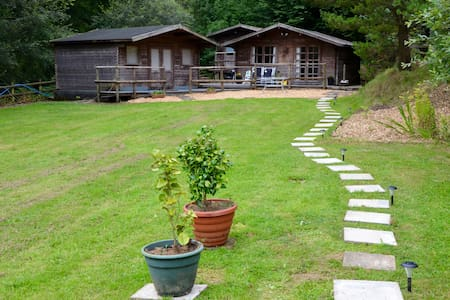 Dog friendly cabins Carmarthen, St Clears - Inny