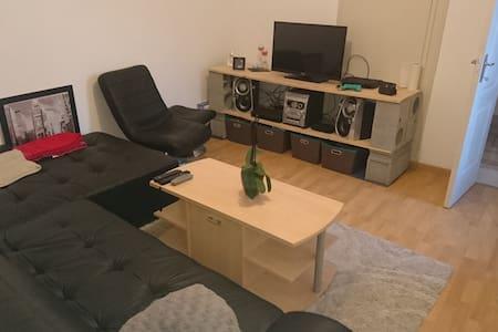 Petit logement très bien situé et agréable - Hus