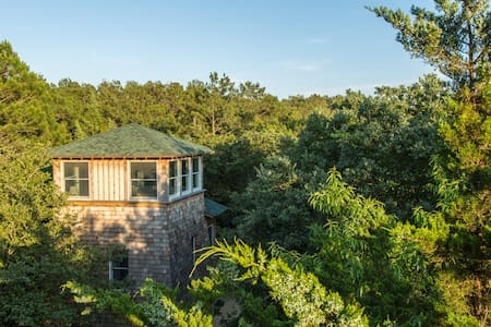 Sleep among the treetops at Treefrog Tower! - Casa
