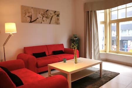 A apartment in the heart of antwerp - Antwerpen - Apartment