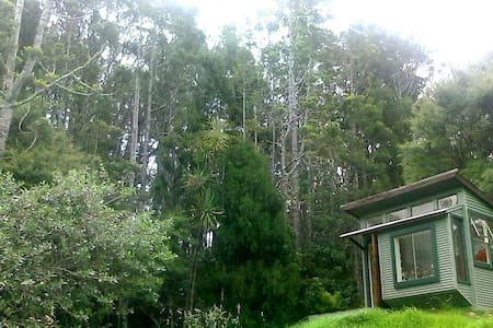 Pauper's Paradise - Holiday Cottage - Auckland - Ev