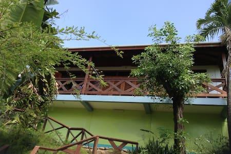 Hummingbird INN - Roseau - Bed & Breakfast
