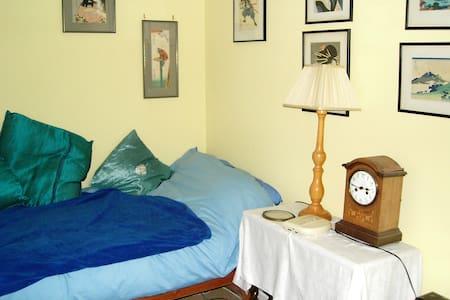 single downstairs room - Casa