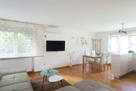 Studio apartment in center, FREE PRIVAT PARKING - Apartment