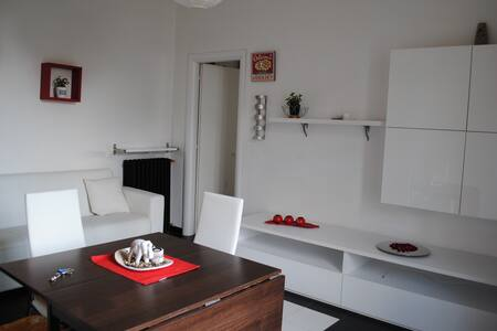 Cosy bright apartment in Milan - Milano - Apartment