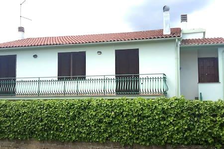 Ivy House - House