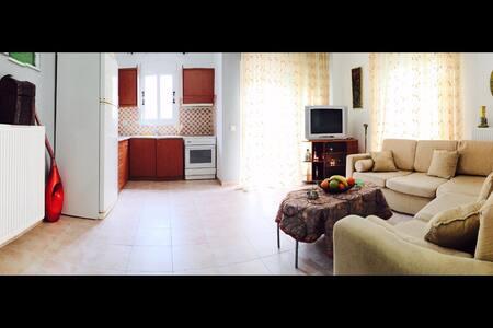 Spacious cosy apartment - Halkidiki