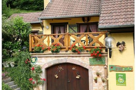 Chalet Alsace Rimbach / Masevaux - Rimbach près de Masevaux - Almhütte
