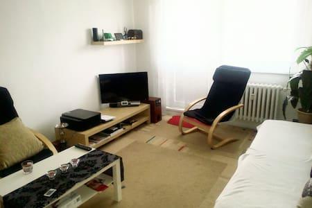 Byt 1+1 s balkonem - Valašské Meziříčí - Apartment