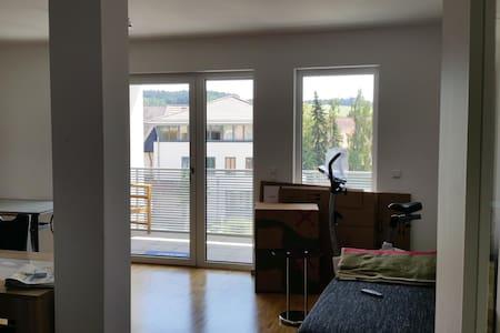 1,5 Zimmer Wohnung - Apartamento
