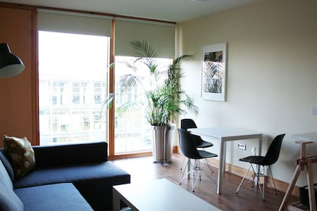 Modern Penthouse One Bed Suite - Dublin 4
