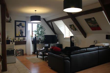 Appartement au coeur du vignoble alsacien - Beblenheim - Appartement