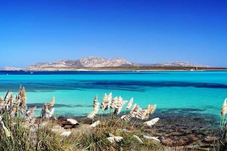 Trilocale Sardegna - costa Smeralda - Cugnana Verde