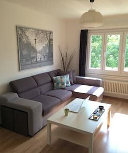 Lovely Flat Close to EPFL & UNIL (fits 4 people) - Apartment