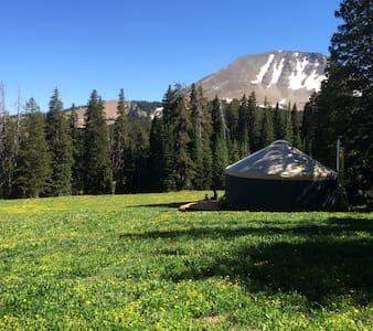 Geyser Pass Yurt - Moab