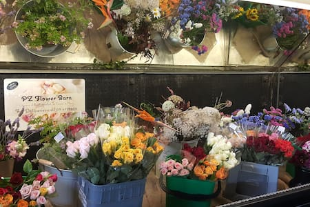 Cut Flower Rose Farm - Camper/RV