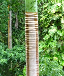 Exotic Jungle Hideaway - Orange Hill