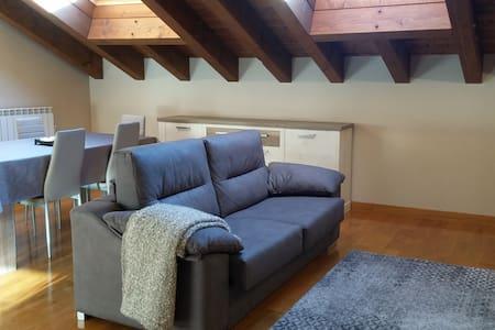 APARTAMENTO  GURE GANBARA - Appartement