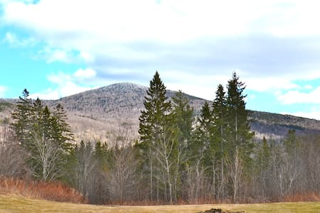 Spruce Mtn Log house with view - Plainfield