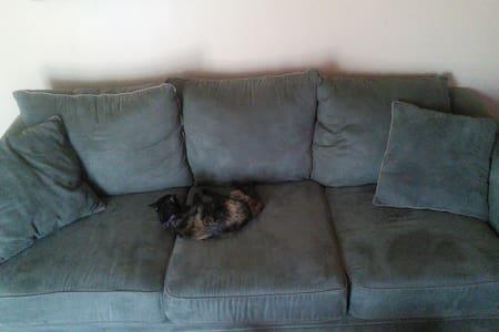 Comfy Couch Near Downtown Phoenix/Light Rail - Phoenix - House