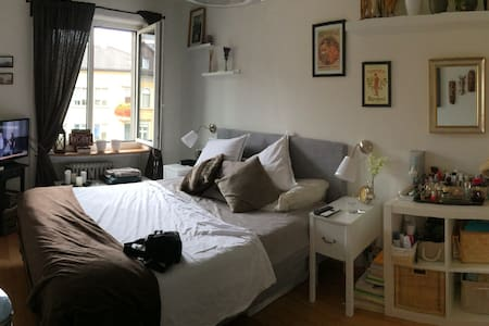 Room - near Zurich lake - Wollishofen - Appartement