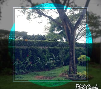 Beautiful home surounded by nature. - Pance