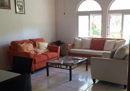Depa céntrico, seguro y totalmente equipado - Managua - Leilighet