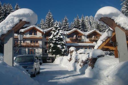 "Chalet ""Birke"" am Gartenhotel Rosenhof - Oberndorf in Tirol - Huis"