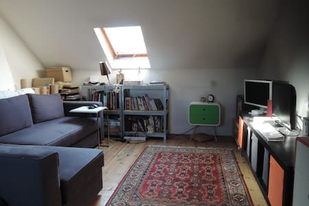 Private Floor under roof in a house with garden - Lille - Townhouse