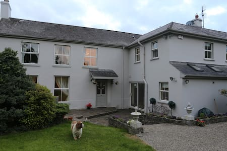 Tranquil King Size Room - Limerick - Other