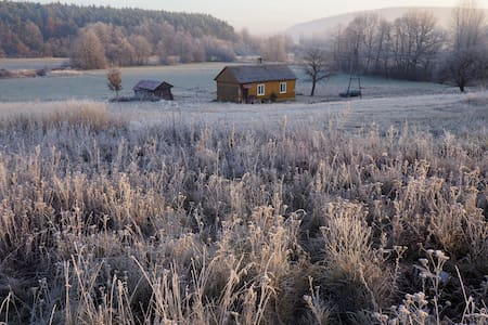 Lovely small wooden house surrounded by nature - Baszowice
