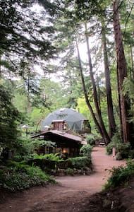 The Dome....Jewel in the Forest - House