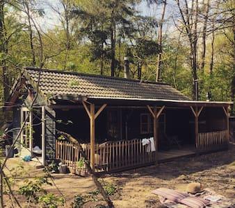 Romantisch boshuisje - Emst