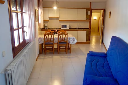 Apartamento en el centro de Ordino! (4 plazas) - Ordino - Appartement