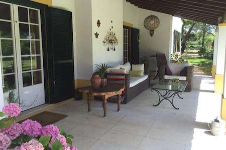 Familiar Country House for Holidays - Santo Estevão