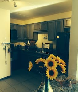 Chicago area condo for your private use - Crestwood - Condominio
