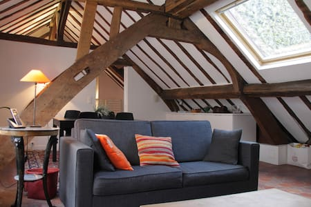 Lovely apartment in Marais Paris - Flat