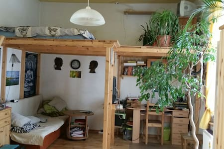 A nice room for couples, families and pets - Berlin - Wohnung