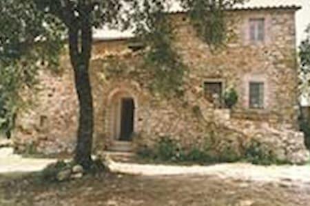 Col di Rosa - Cortona - House