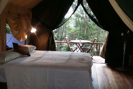 Pulau Perhentian Jungle Safari Tent - Tente