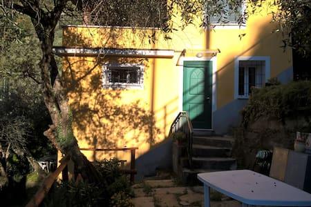 luminoso appartamento romantico tra gli olivi - Cogorno - Apartment