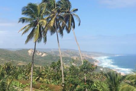 Magnificent Island and sea views. - Casa