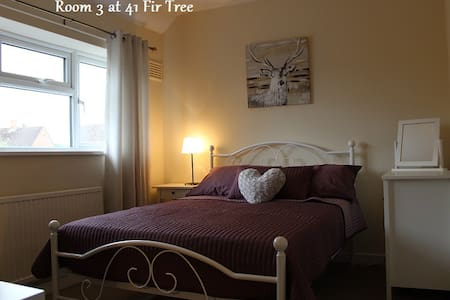 Large Double Room: 41 Fir Tree Road, GU1 1JN - Guildford
